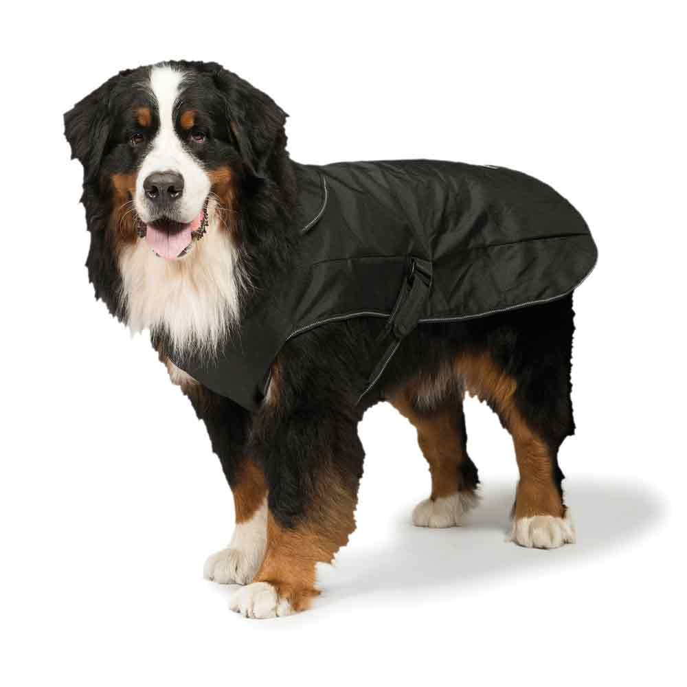 2 In 1 Waterproof Harness Dog Coat By Danish Design Dog