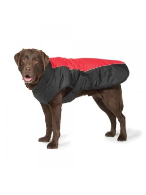 Sports Luxe Waterproof Dog Coat Black and Red by Danish Design