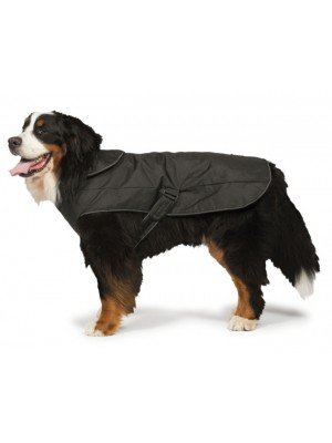 2-in-1 Waterproof Harness Dog Coat by Danish Design
