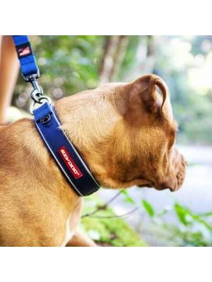 EzyDog Neo Dog Collar with Dog
