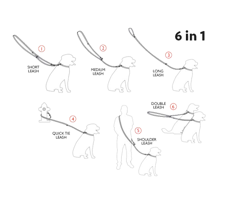 Ami Play 6 in 1 Dog Lead